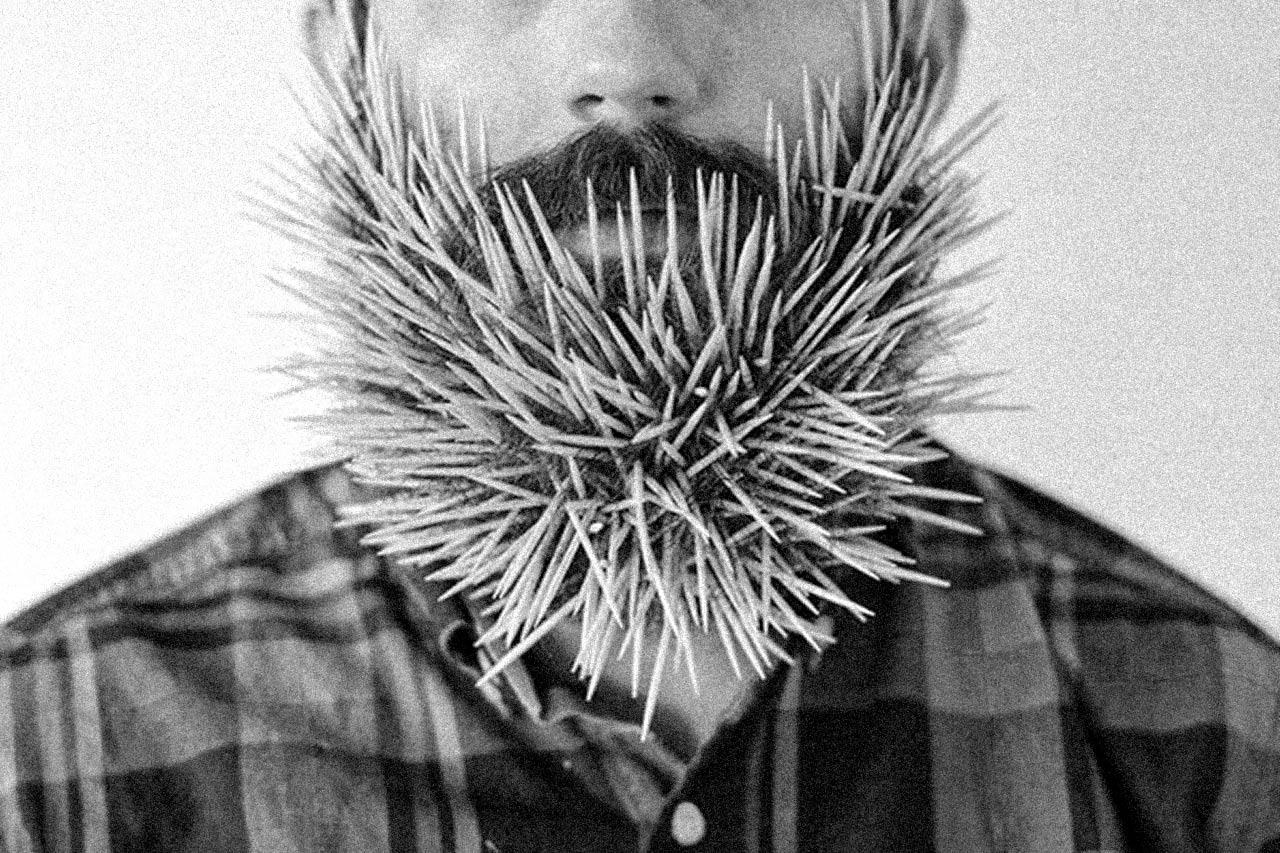 Was ein Bart alles kann.